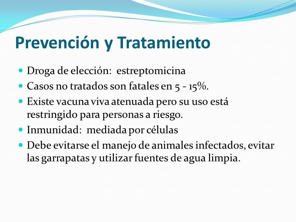 Prevención y Tratamiento Droga de elección: estreptomicina Casos no tratados son fatales en 5 - 15%.