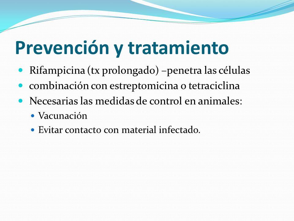 Prevención y tratamiento Rifampicina (tx prolongado) –penetra las células combinación con estreptomicina o tetraciclina Necesarias las medidas de control en animales: Vacunación Evitar contacto con material infectado.