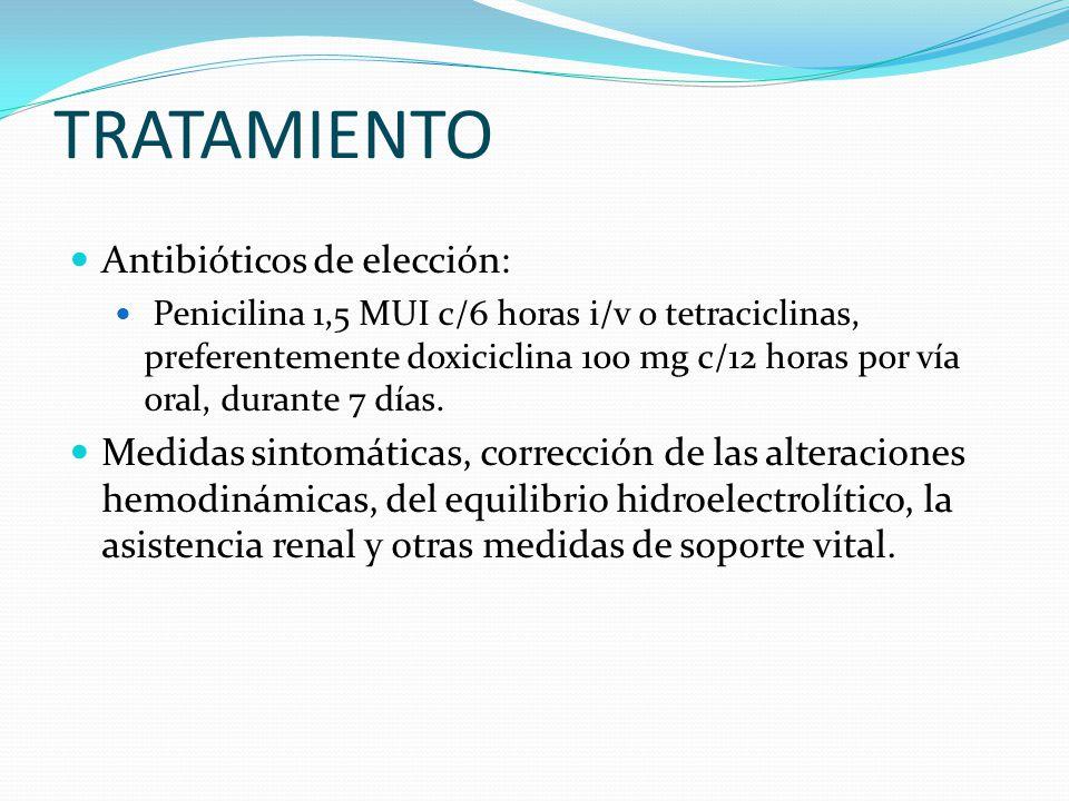 TRATAMIENTO Antibióticos de elección: Penicilina 1,5 MUI c/6 horas i/v o tetraciclinas, preferentemente doxiciclina 100 mg c/12 horas por vía oral, durante 7 días.