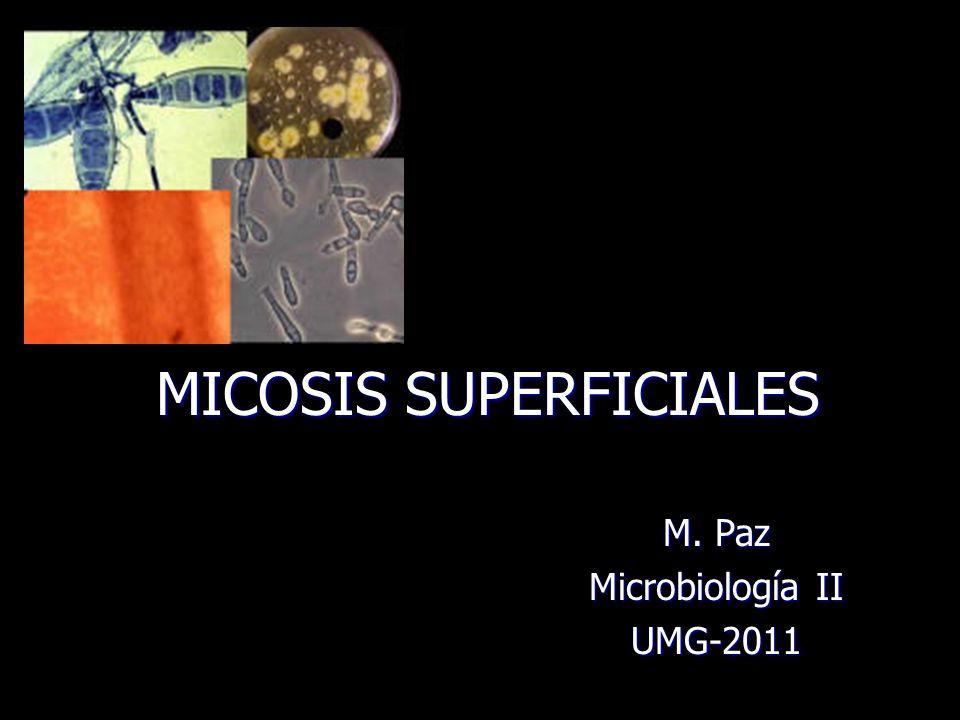 MICOSIS SUPERFICIALES M. Paz Microbiología II UMG-2011