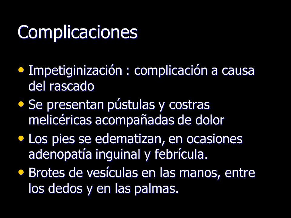 Complicaciones Impetiginización : complicación a causa del rascado Impetiginización : complicación a causa del rascado Se presentan pústulas y costras melicéricas acompañadas de dolor Se presentan pústulas y costras melicéricas acompañadas de dolor Los pies se edematizan, en ocasiones adenopatía inguinal y febrícula.