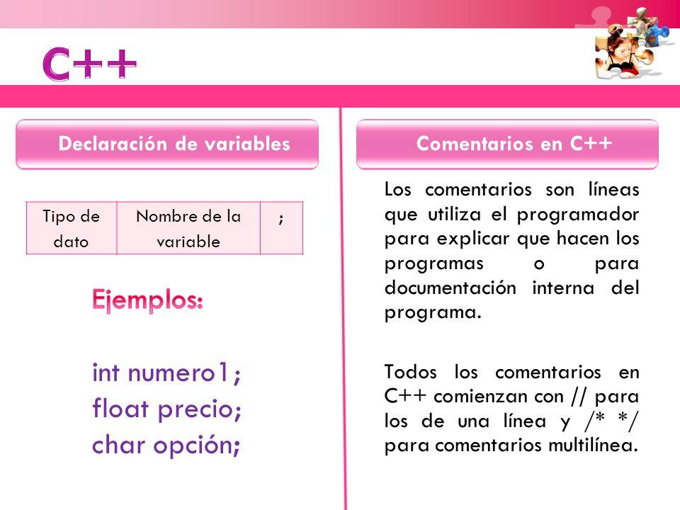 Tipo de dato Nombre de la variable ; Los comentarios son líneas que utiliza el programador para explicar que hacen los programas o para documentación interna del programa.
