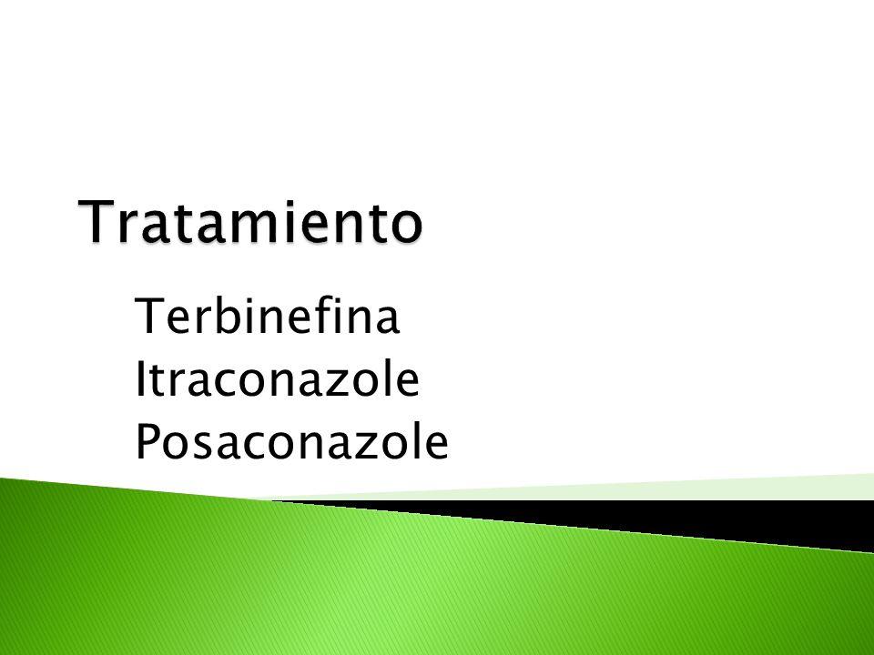 Terbinefina Itraconazole Posaconazole