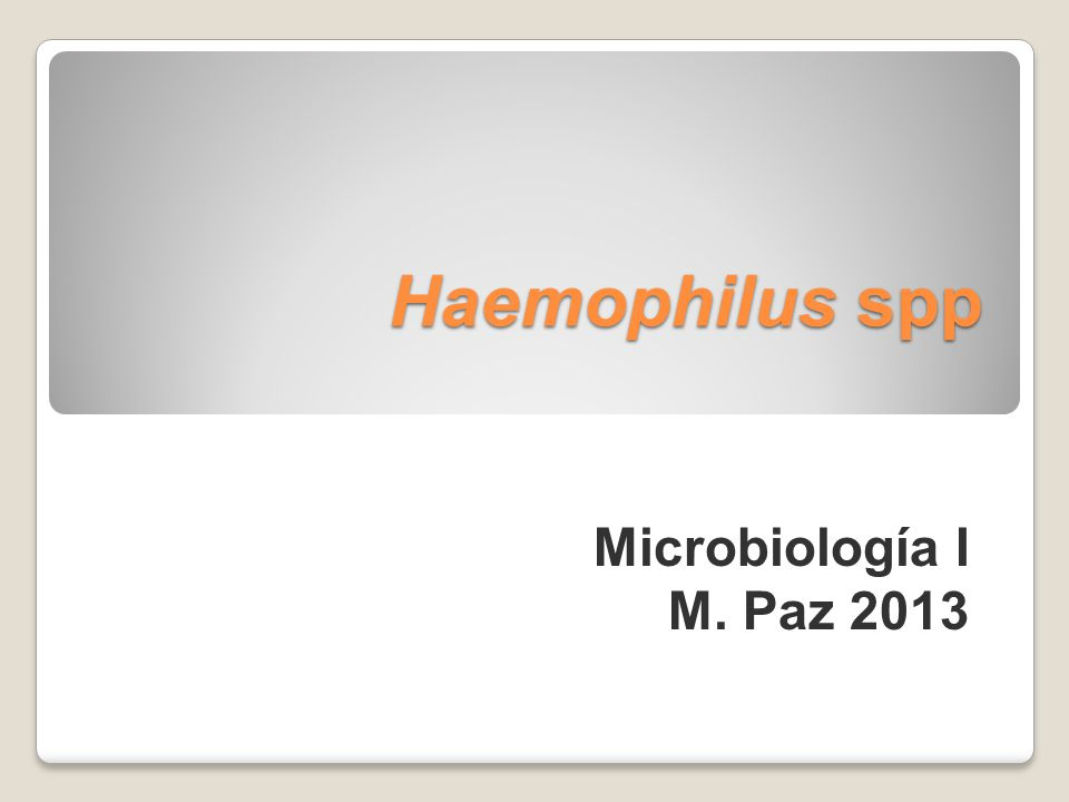 Haemophilus spp Microbiología I M. Paz 2013