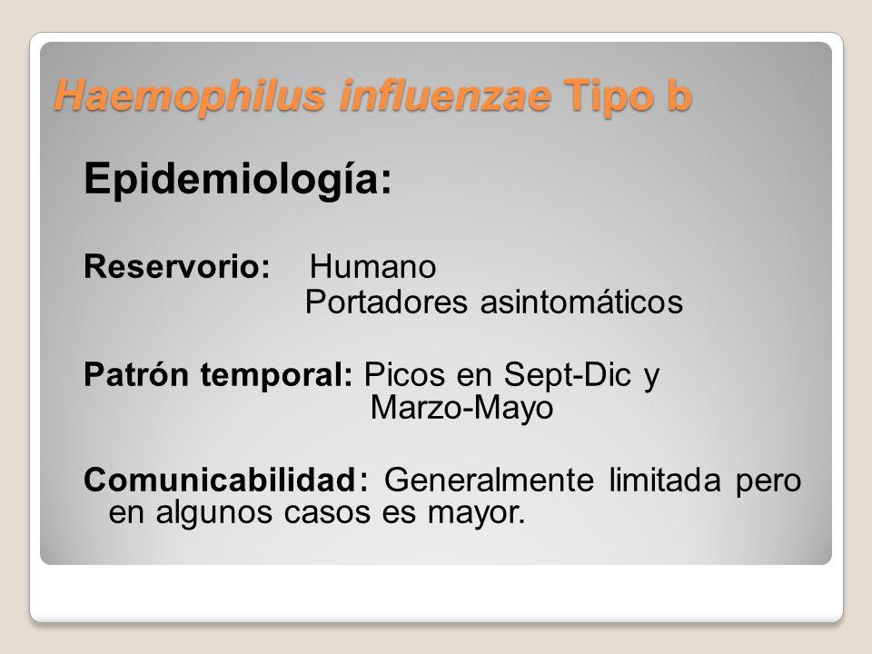 Haemophilus influenzae Tipo b Epidemiología: Reservorio: Humano Portadores asintomáticos Patrón temporal: Picos en Sept-Dic y Marzo-Mayo Comunicabilidad : Generalmente limitada pero en algunos casos es mayor.