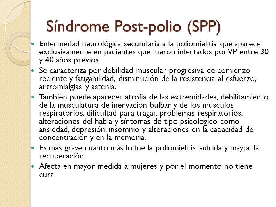 Síndrome Post-polio (SPP) Enfermedad neurológica secundaria a la poliomielitis que aparece exclusivamente en pacientes que fueron infectados por VP entre 30 y 40 años previos.