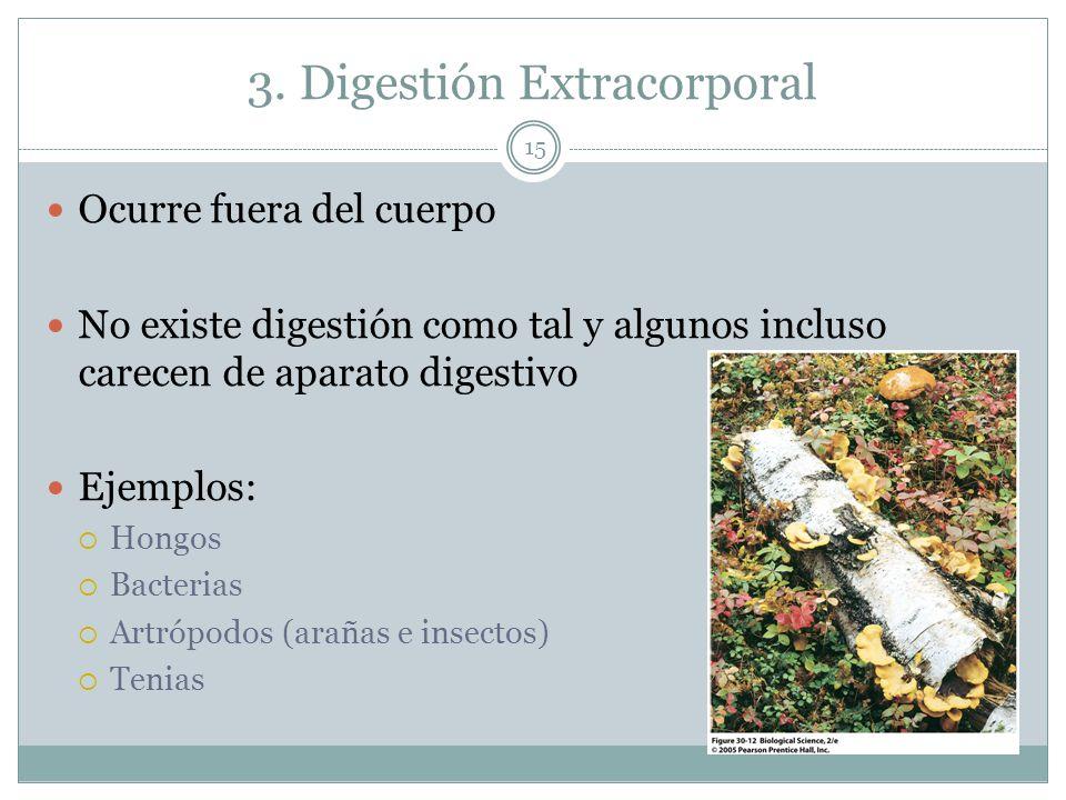 3. Digestión Extracorporal Ocurre fuera del cuerpo No existe digestión como tal y algunos incluso carecen de aparato digestivo Ejemplos: Hongos Bacter
