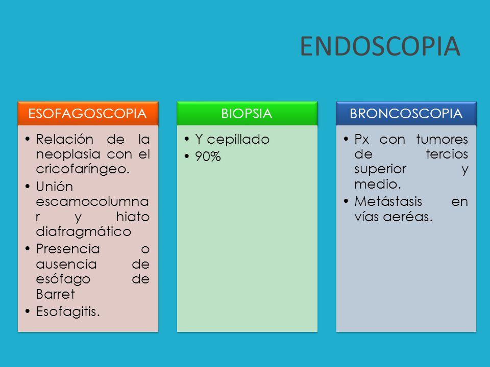 ENDOSCOPIA o Estadificación del cáncer de esófago.