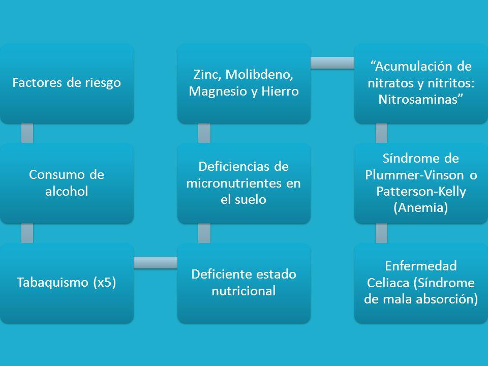 Factores de Riesgo Irritación esofágica crónica Estenosis por cáusticos Acalasia y divertículos Epitelio de Barrett y reflujo gastroesofágico (40 veces mayor)