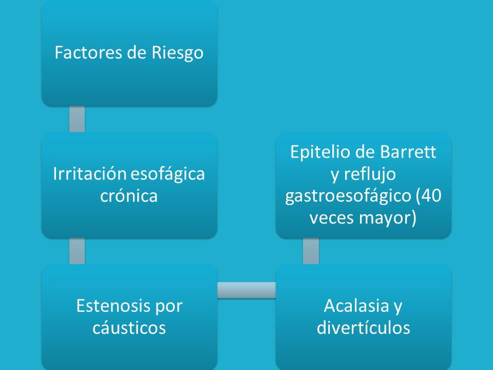 Patrones de Crecimiento Tumoral Ulceroso Fungoide Infiltrante *Úlcera bien delimitada *Bordes elevados *Crecimiento intraluminal*Extenso crecimiento intratumoral *Casi siempre circunferencial *Mínima ulceración *La falta de cubierta serosa del esófago explica la invasión tumoral temprana a estructuras mediastínicas (Tráquea, bronquio principal izquierdo, aorta, pericardio y pleura)