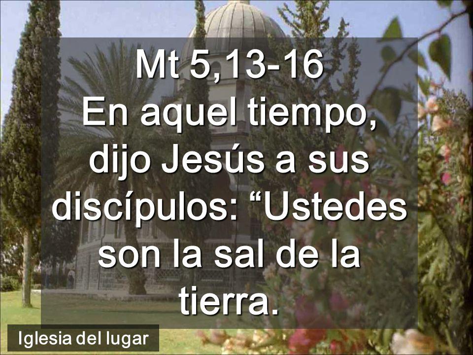Mt 5,13-16 En aquel tiempo, dijo Jesús a sus discípulos: Ustedes son la sal de la tierra.