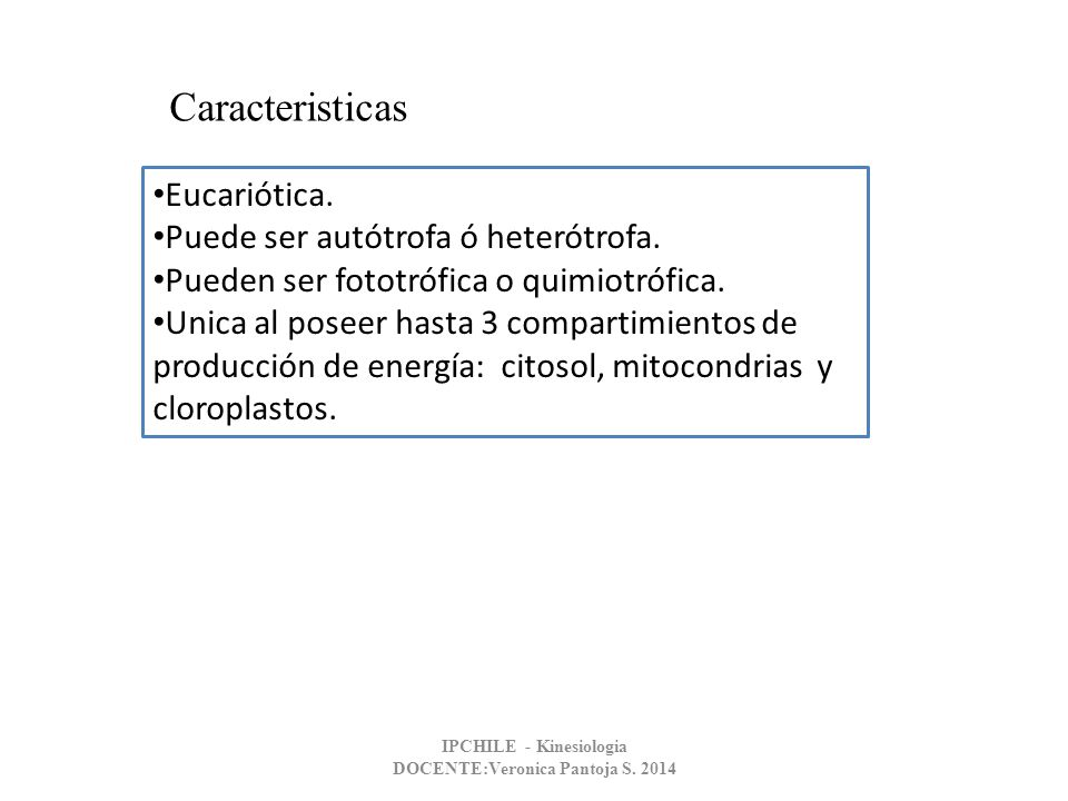 CELULA VEGETAL PARED CELULAR Composición Química: Formada por moléculas complejas.