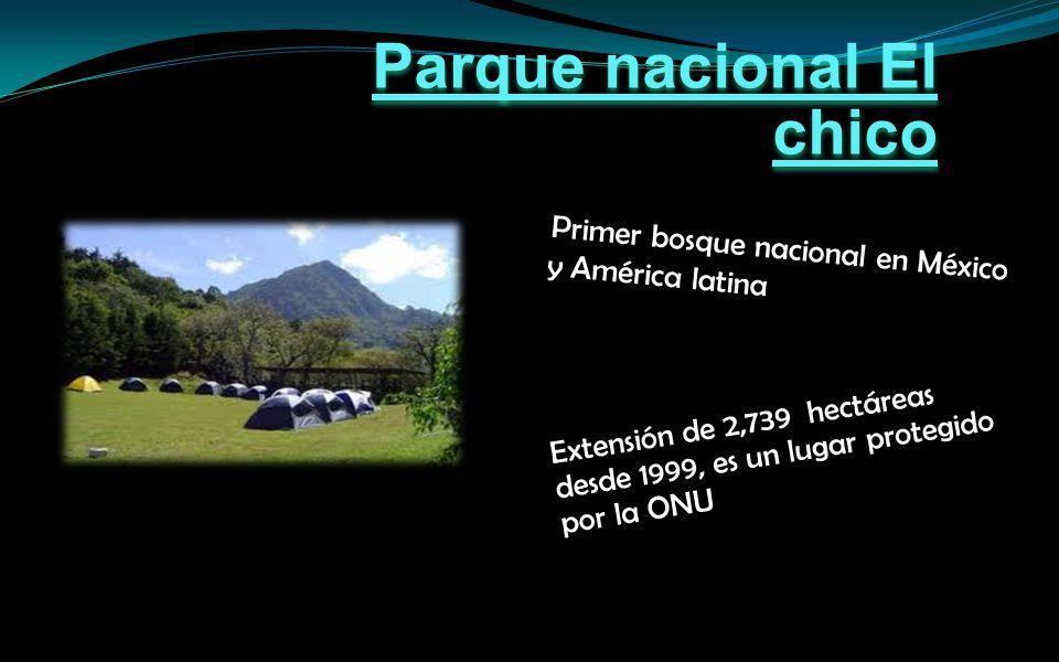 Primer bosque nacional en México y América latina Extensión de 2,739 hectáreas desde 1999, es un lugar protegido por la ONU