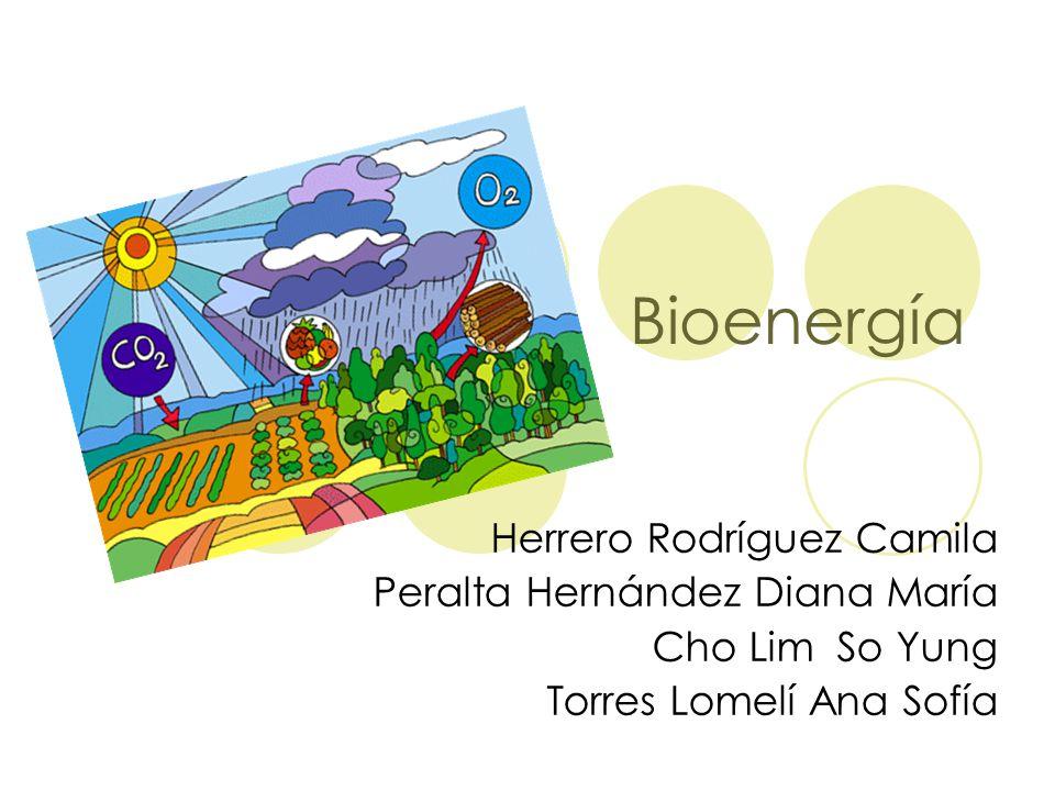 Bioenergía Herrero Rodríguez Camila Peralta Hernández Diana María Cho Lim So Yung Torres Lomelí Ana Sofía