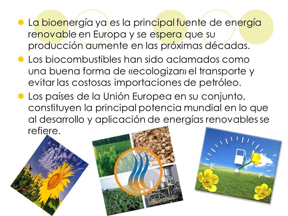 La bioenergía ya es la principal fuente de energía renovable en Europa y se espera que su producción aumente en las próximas décadas. Los biocombustib