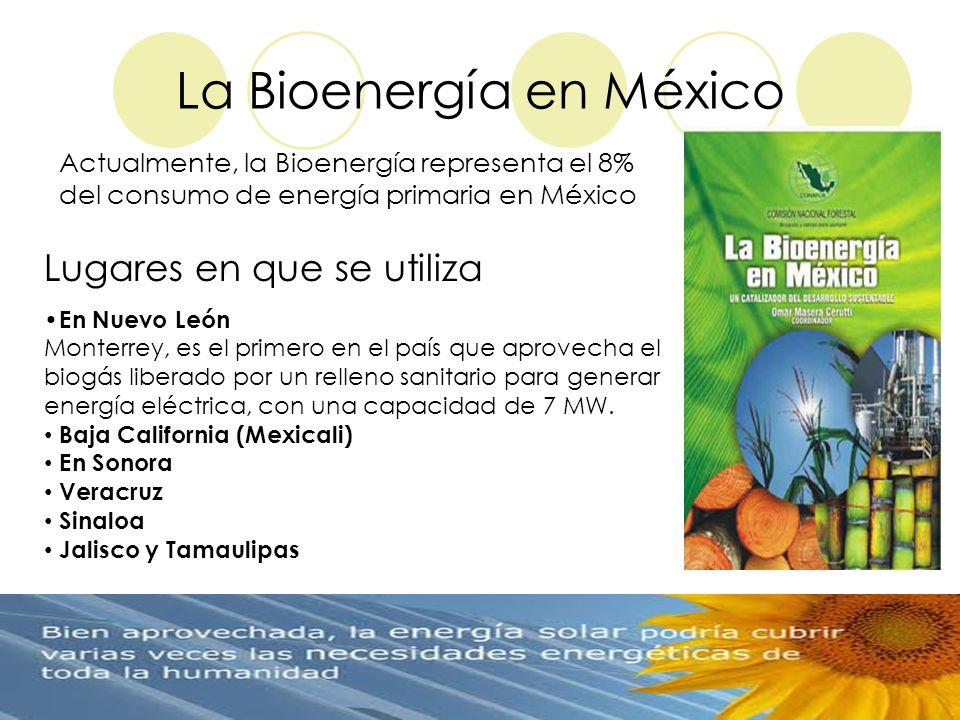 La Bioenergía en México Actualmente, la Bioenergía representa el 8% del consumo de energía primaria en México En Nuevo León Monterrey, es el primero e
