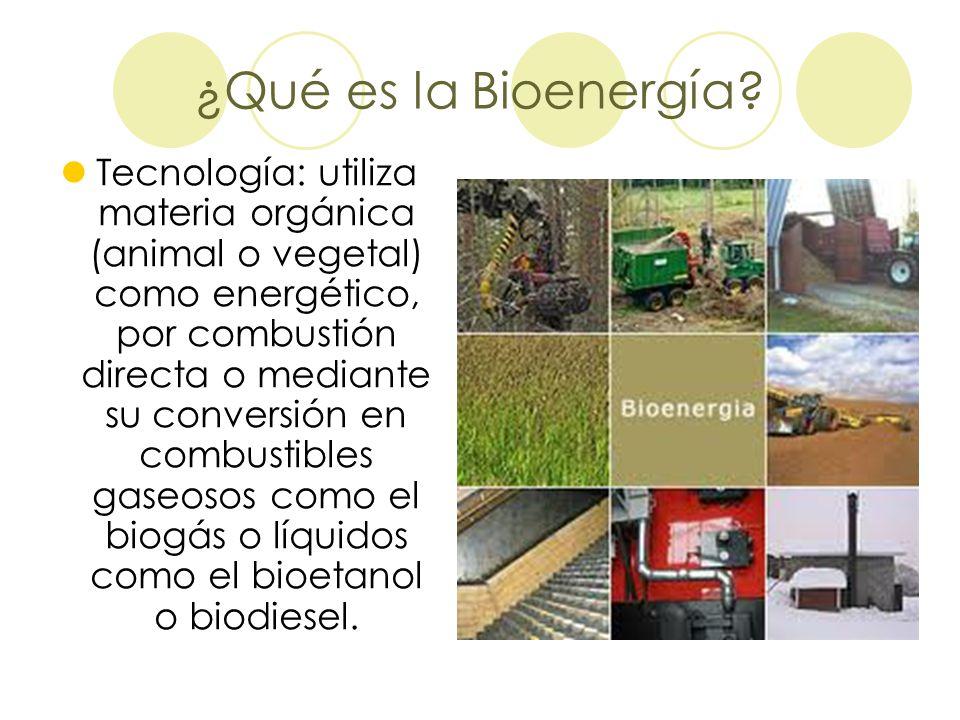 ¿Qué es la Bioenergía? Tecnología: utiliza materia orgánica (animal o vegetal) como energético, por combustión directa o mediante su conversión en com