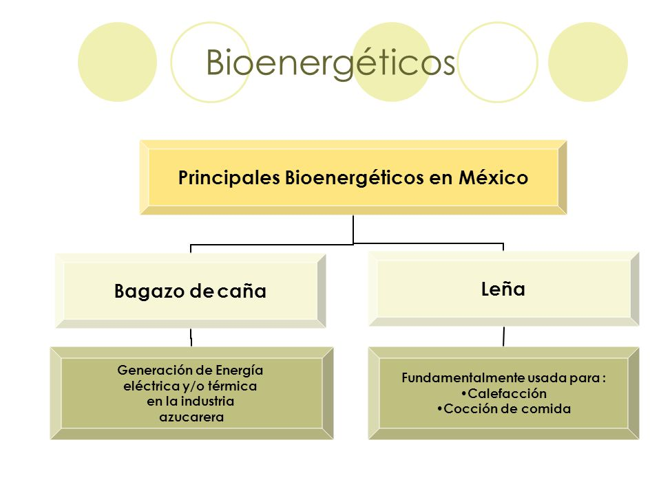 Bioenergéticos Principales Bioenergéticos en México Bagazo de caña Generación de Energía eléctrica y/o térmica en la industria azucarera Leña Fundamen