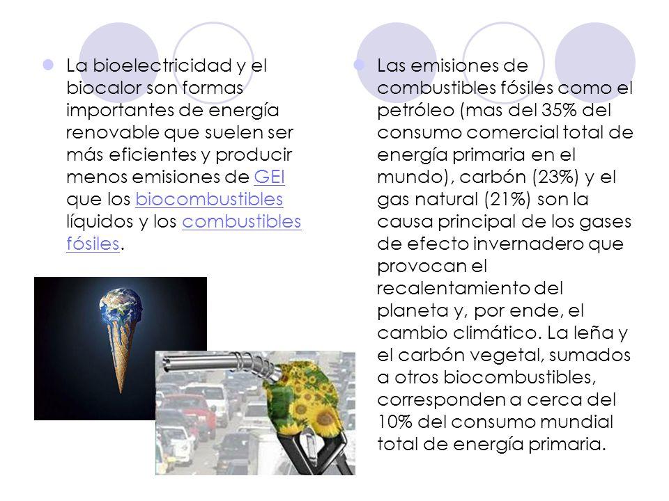 La bioelectricidad y el biocalor son formas importantes de energía renovable que suelen ser más eficientes y producir menos emisiones de GEI que los b
