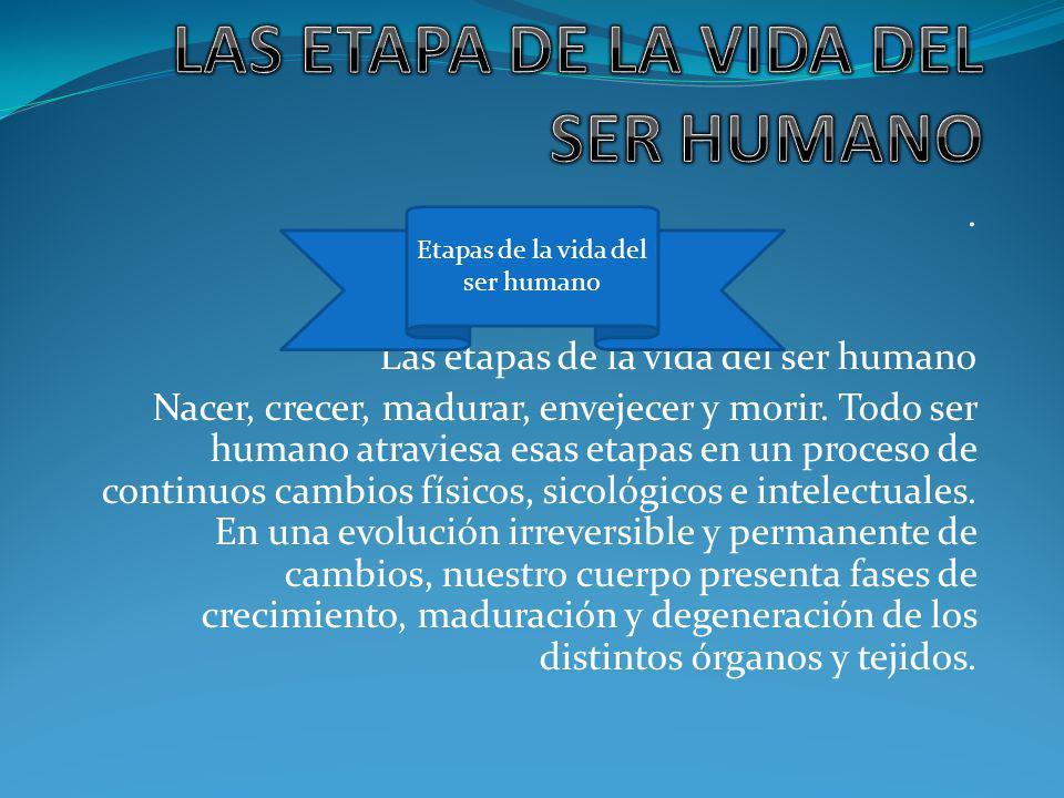Las etapas de la vida del ser humano Nacer, crecer, madurar, envejecer y morir.