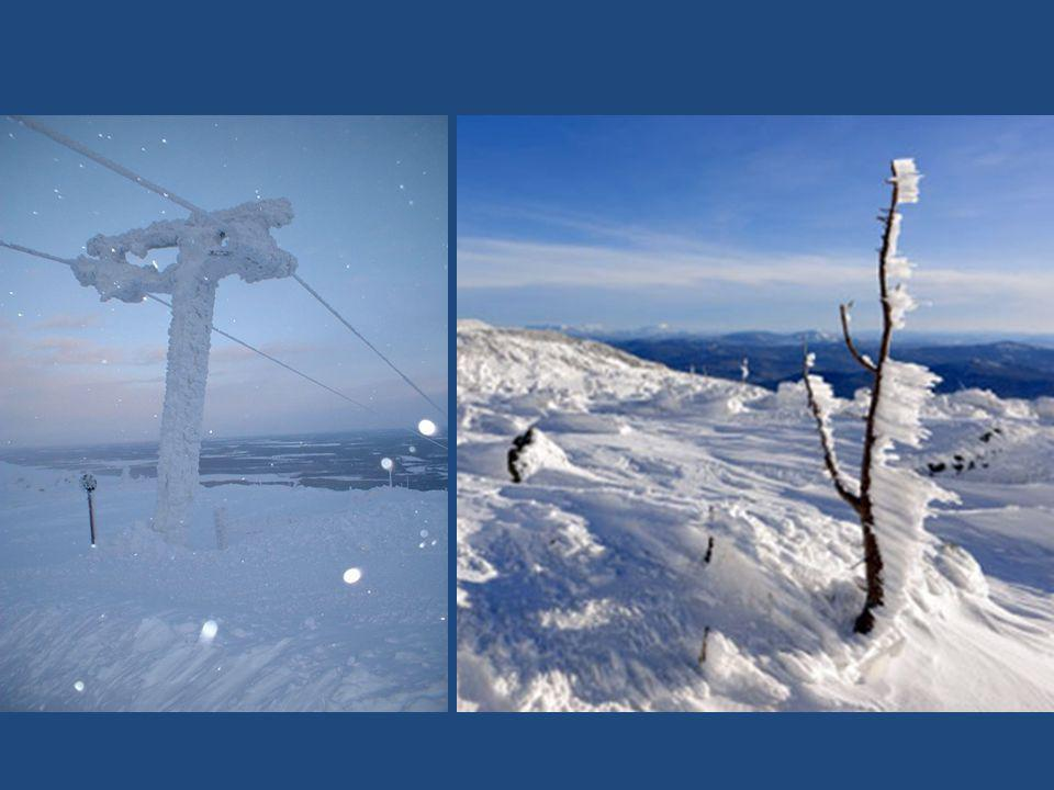 El alcalde de Oymyakon da un certificado de la visita al Polo del Frío, donde muy pocos turistas acuden cada año. -56 ° C Le maire délivre un certific