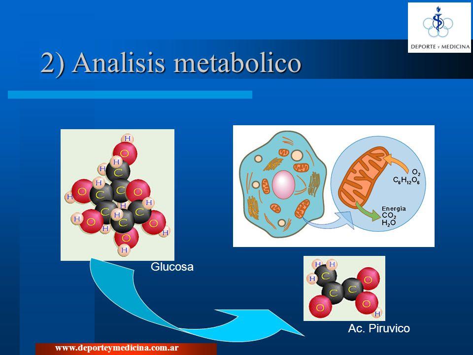 www.deporteymedicina.com.ar 2) Analisis metabolico Glucosa Ac. Piruvico