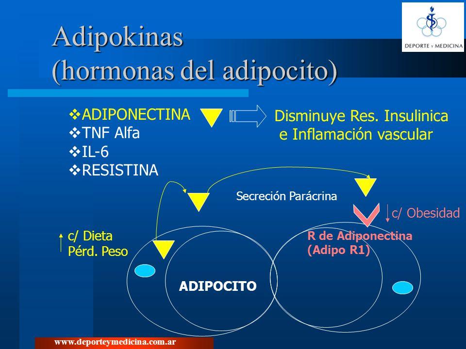www.deporteymedicina.com.ar Adipokinas (hormonas del adipocito) ADIPONECTINA TNF Alfa IL-6 RESISTINA Disminuye Res. Insulinica e Inflamación vascular