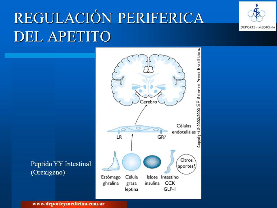 www.deporteymedicina.com.ar REGULACIÓN PERIFERICA DEL APETITO Peptido YY Intestinal (Orexigeno)