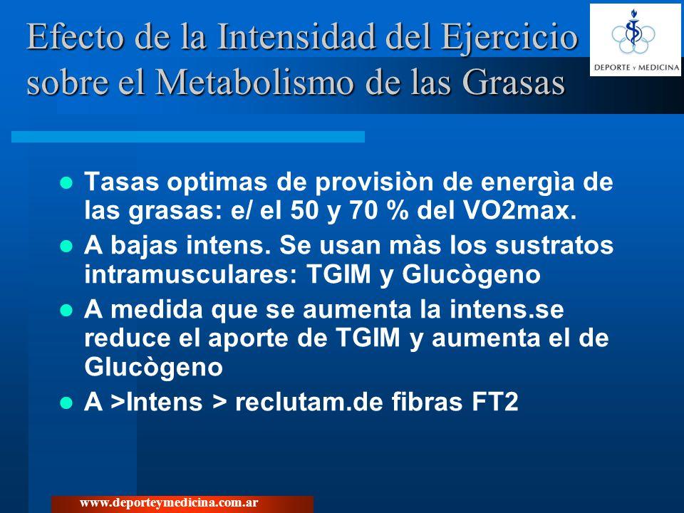 www.deporteymedicina.com.ar Efectos del entrenamiento a diferentes intensidades (40% Vs 70% VO2 máx) sobre el metabolismo de las grasas en hombres obesos.