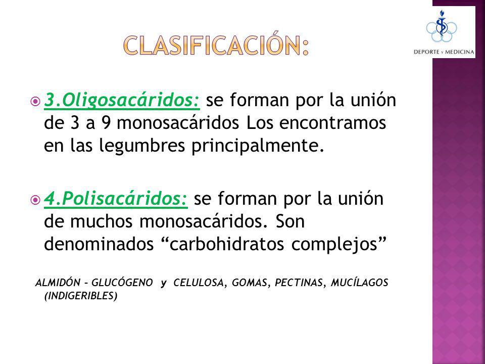 3.Oligosacáridos: se forman por la unión de 3 a 9 monosacáridos Los encontramos en las legumbres principalmente.