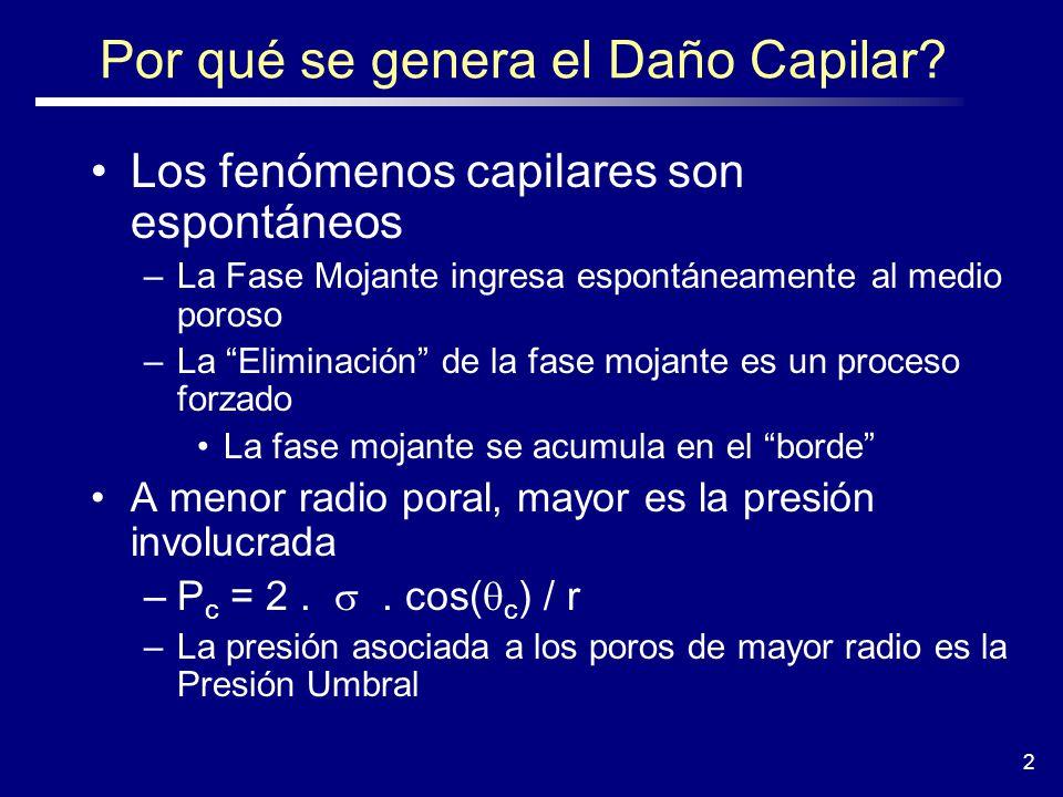 23 Equivalencias con un Tubo Capilar Pc = P nm - P m Posición Horizontal Inicial En Equilibrio