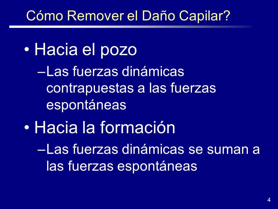 4 Cómo Remover el Daño Capilar.