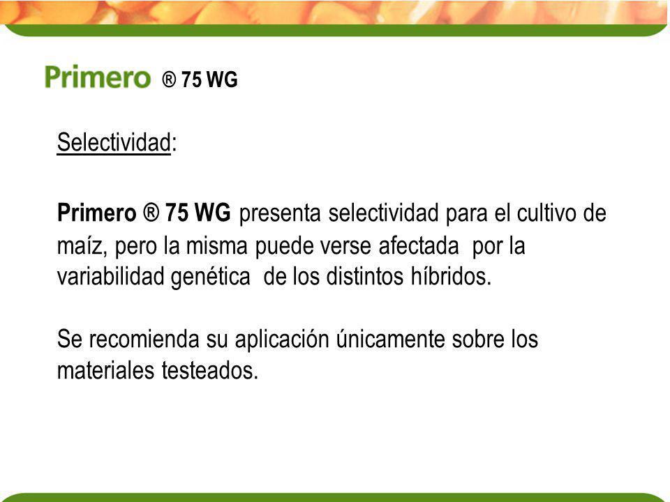 Selectividad: Primero ® 75 WG presenta selectividad para el cultivo de maíz, pero la misma puede verse afectada por la variabilidad genética de los di