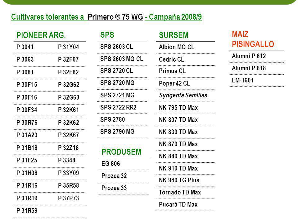 PIONEER ARG. P 3041P 31Y04 P 3063P 32F07 P 3081P 32F82 P 30F15P 32G62 P 30F16P 32G63 P 30F34P 32K61 P 30R76P 32K62 P 31A23P 32K67 P 31B18P 32Z18 P 31F