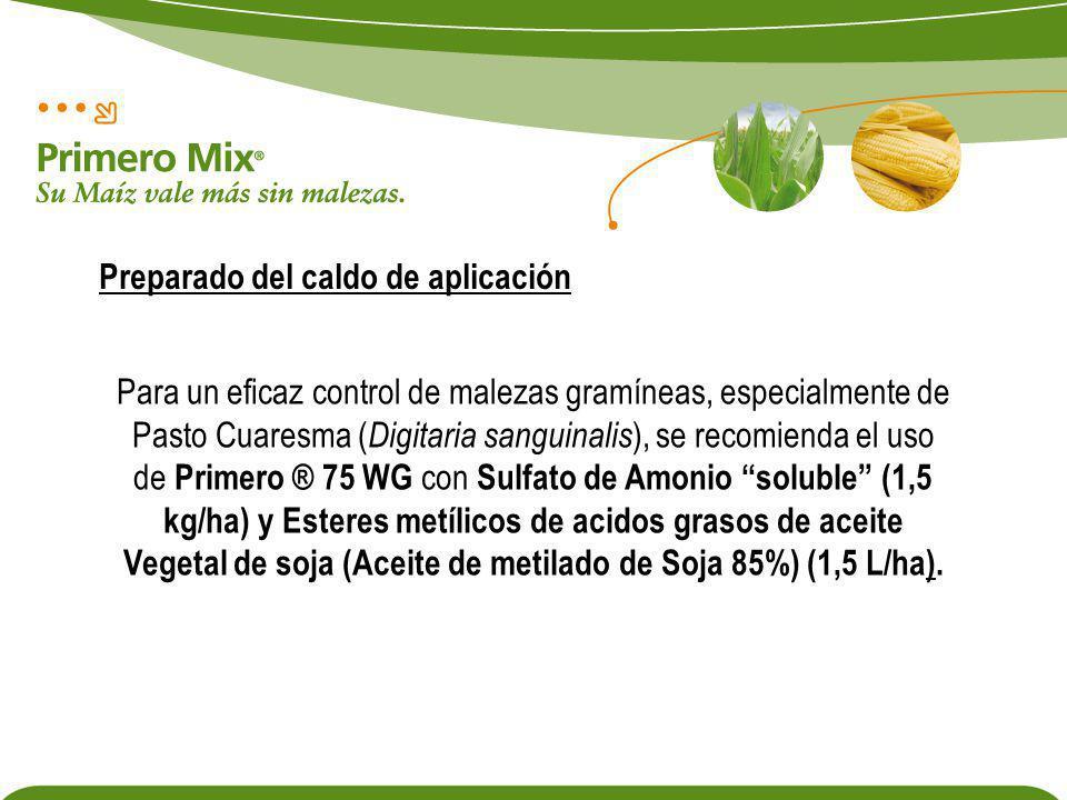 Para un eficaz control de malezas gramíneas, especialmente de Pasto Cuaresma ( Digitaria sanguinalis ), se recomienda el uso de Primero ® 75 WG con Su