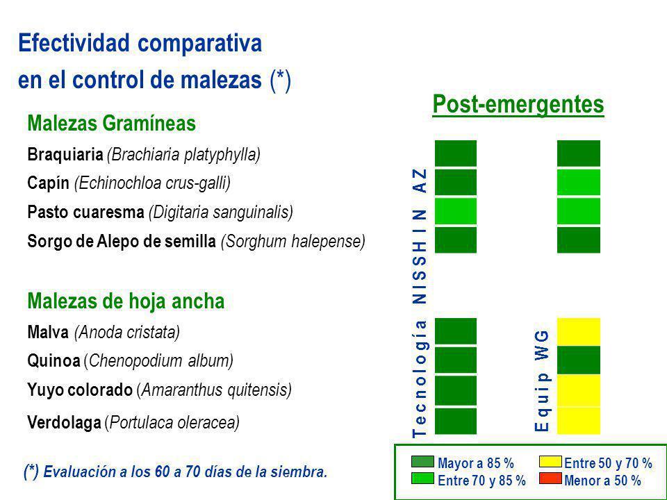Post-emergentes Efectividad comparativa en el control de malezas (*) Malezas Gramíneas Braquiaria (Brachiaria platyphylla) Capín (Echinochloa crus-gal