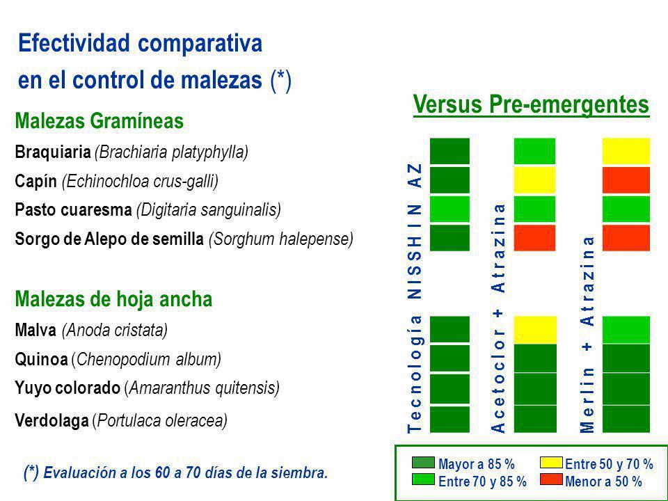 Versus Pre-emergentes Efectividad comparativa en el control de malezas (*) Malezas Gramíneas Braquiaria (Brachiaria platyphylla) Capín (Echinochloa cr