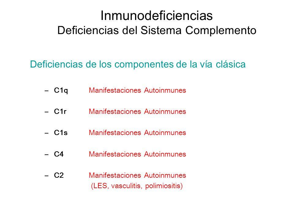 Inmunodeficiencias Deficiencias del Sistema Complemento Deficiencias de los componentes de la vía clásica –C1qManifestaciones Autoinmunes –C1rManifest