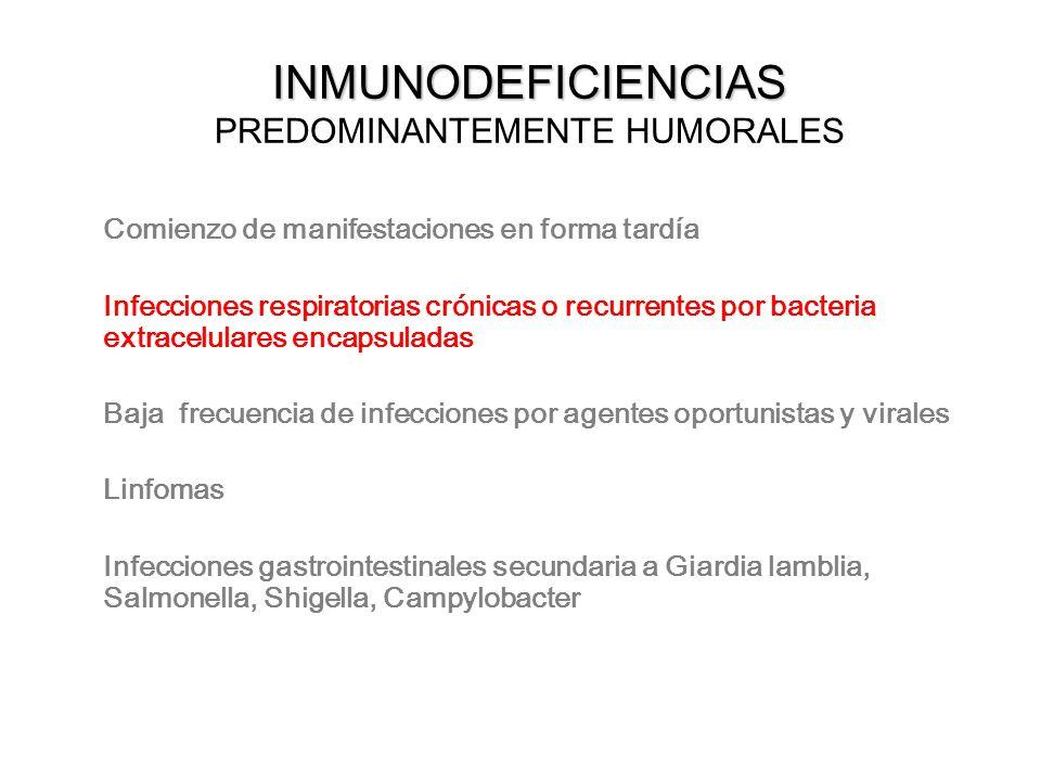 INMUNODEFICIENCIAS INMUNODEFICIENCIAS PREDOMINANTEMENTE HUMORALES Comienzo de manifestaciones en forma tardía Infecciones respiratorias crónicas o rec