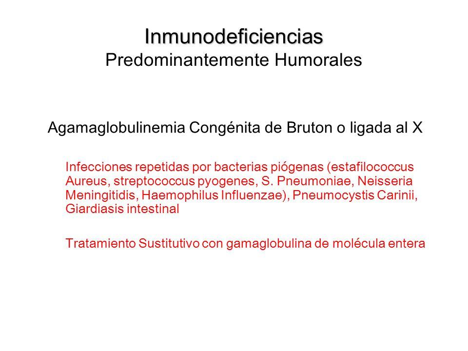 Inmunodeficiencias Inmunodeficiencias Predominantemente Humorales Agamaglobulinemia Congénita de Bruton o ligada al X Infecciones repetidas por bacter