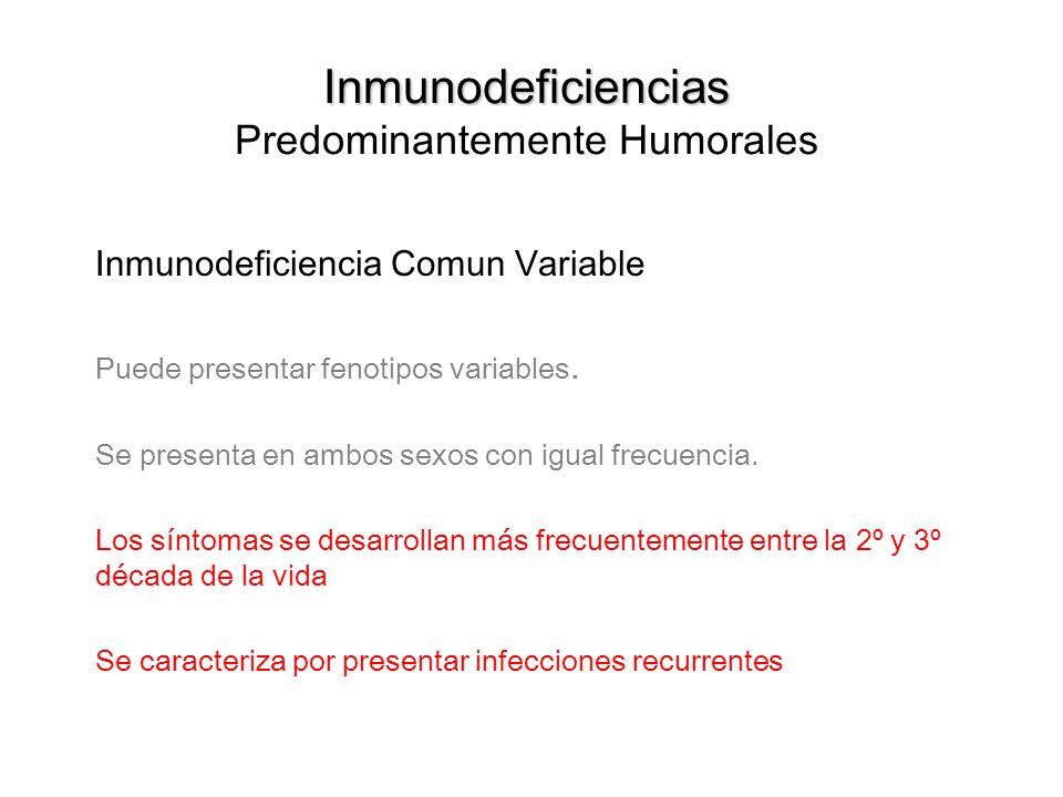 Inmunodeficiencias Inmunodeficiencias Predominantemente Humorales Inmunodeficiencia Comun Variable Puede presentar fenotipos variables. Se presenta en