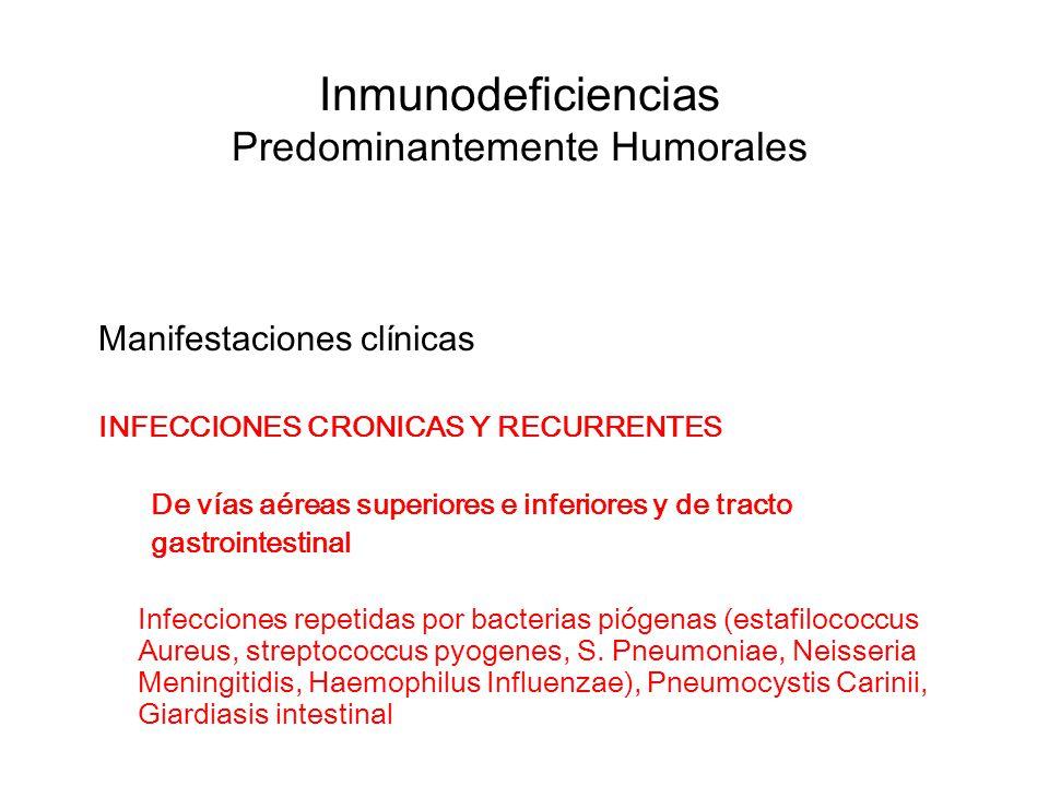 Inmunodeficiencias Predominantemente Humorales Manifestaciones clínicas INFECCIONES CRONICAS Y RECURRENTES De vías aéreas superiores e inferiores y de