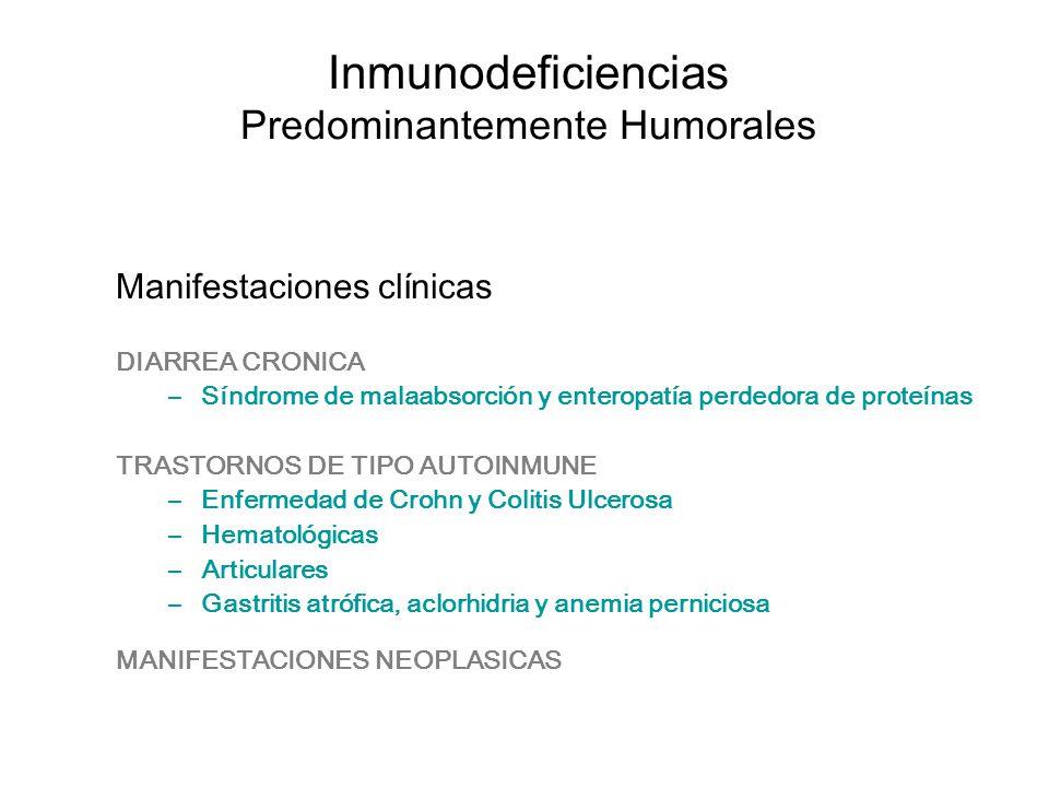 Inmunodeficiencias Predominantemente Humorales Manifestaciones clínicas DIARREA CRONICA –Síndrome de malaabsorción y enteropatía perdedora de proteína