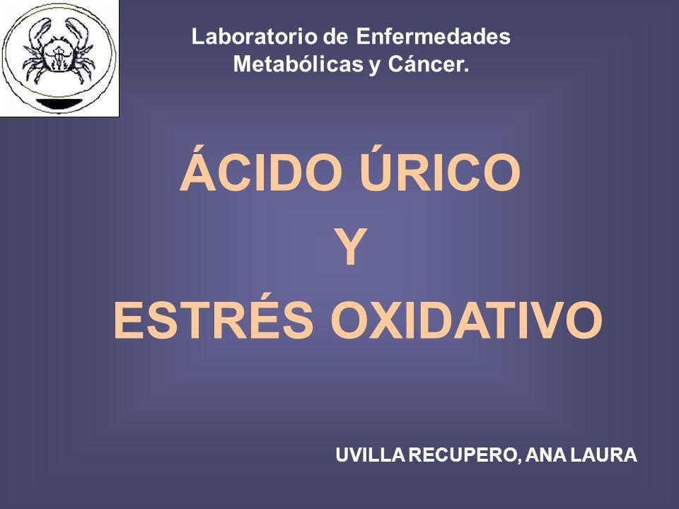 ÁCIDO ÚRICO Y ESTRÉS OXIDATIVO UVILLA RECUPERO, ANA LAURA Laboratorio de Enfermedades Metabólicas y Cáncer.