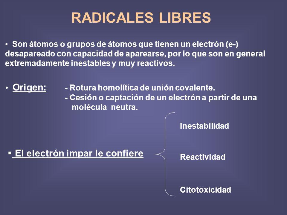 RADICALES LIBRES Son átomos o grupos de átomos que tienen un electrón (e-) desapareado con capacidad de aparearse, por lo que son en general extremadamente inestables y muy reactivos.