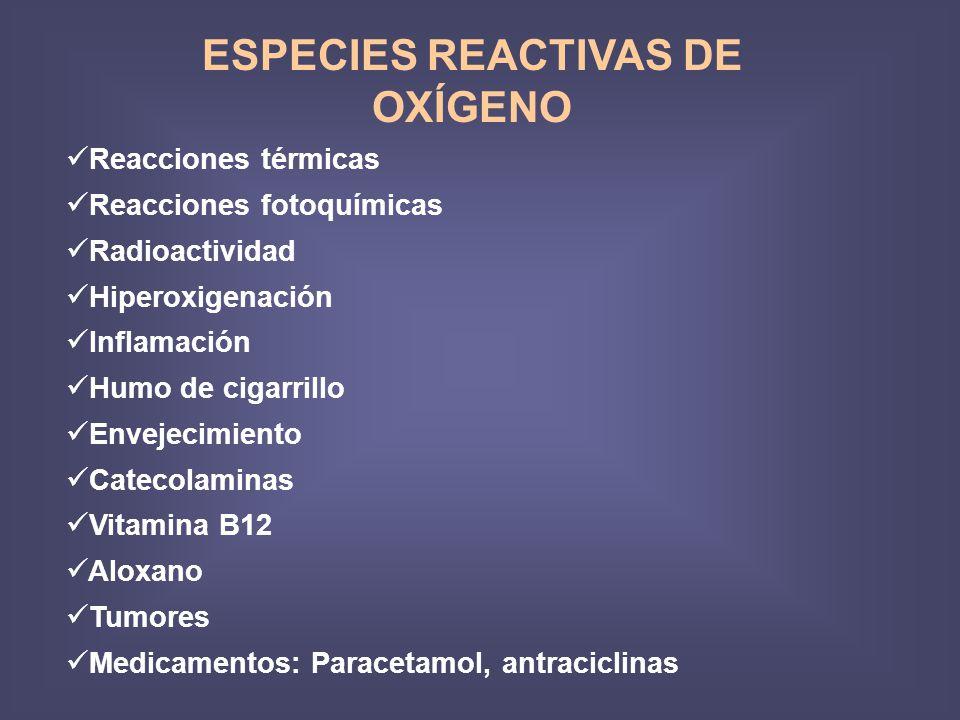 ESPECIES REACTIVAS DE OXÍGENO Reacciones térmicas Reacciones fotoquímicas Radioactividad Hiperoxigenación Inflamación Humo de cigarrillo Envejecimiento Catecolaminas Vitamina B12 Aloxano Tumores Medicamentos: Paracetamol, antraciclinas