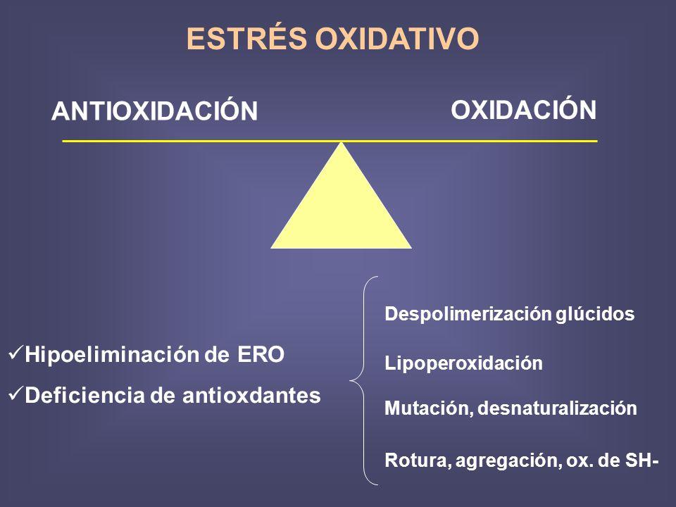 ESTRÉS OXIDATIVO ANTIOXIDACIÓN OXIDACIÓN Hipoeliminación de ERO Deficiencia de antioxdantes Despolimerización glúcidos Lipoperoxidación Mutación, desnaturalización Rotura, agregación, ox.