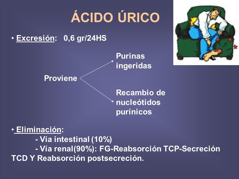 ÁCIDO ÚRICO Eliminación: - Vía intestinal (10%) - Vía renal(90%): FG-Reabsorción TCP-Secreción TCD Y Reabsorción postsecreción. Excresión: 0,6 gr/24HS