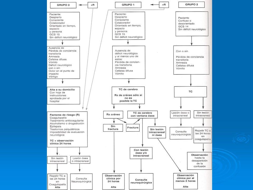Guías para el manejo de adultos con TEC leve Grupo de Estudio de Traumatismo de Cráneo de la Soc.