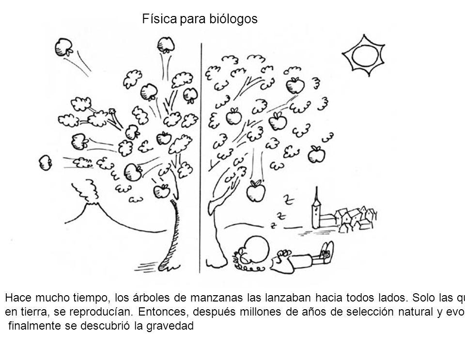 Hace mucho tiempo, los árboles de manzanas las lanzaban hacia todos lados. Solo las que caían en tierra, se reproducían. Entonces, después millones de
